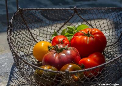 Ambiance - Tomates - 20140702 - 7742
